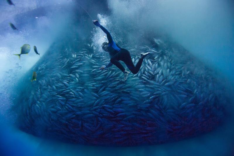 FILIPINO FISHERMEN COMPRESSOR DIVING